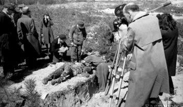 Ekshumacje na miejscu niemieckich zbrodni w Palmirach - po zakończeniu okupacji /Archiwum Szczecińskich /East News