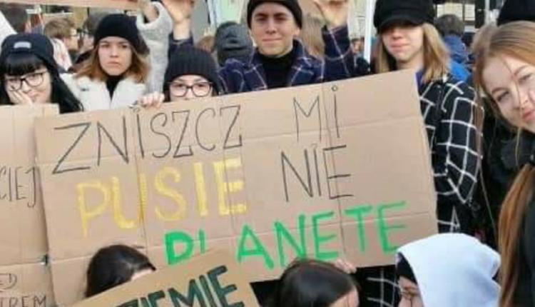 strajk klimatyczny listopad 2019/ fot. Twitter